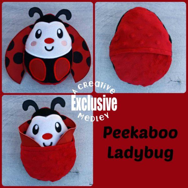Peekaboo Ladybug
