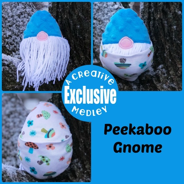 Peekaboo Gnome